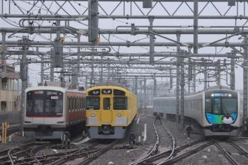 2019年6月10日。石神井公園。左から6601レで到着した東急5173F、5601レで到着したはずの2079F、4652レ(54M運用)の40103F(コウペン)。4652レは5分ほど遅れてたようです。