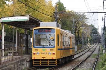 2009年11月24日 8時40分頃、学習院下、7022の三ノ輪橋ゆき。