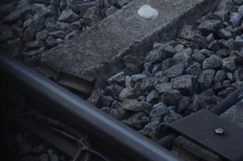 2011年4月24日、ひばりが丘、上り本線・飯能方の軌道。