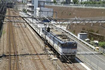 2011年7月10日 10時30分頃、新秋津、EF65-1067+西武1251Fの甲種貨物列車。
