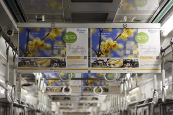 2012年1月18日、車内広告が長瀞の臘梅の中吊りだけの6110F車内。