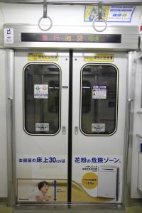 2013年2月23日、20101Fの側扉の車内側(飯能方・山側)。