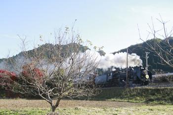 2013年11月14日、白久~三峰口、C58-363牽引の下りSL列車(5001レ)。