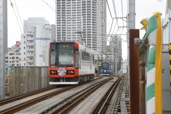 2016年2月21日、都電雑司ヶ谷~鬼子母神前、工事区間で新型車8800形のすれ違い。