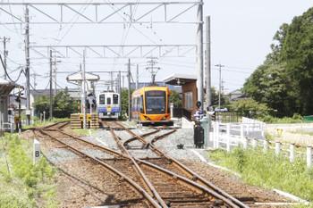 2016年7月10日 13時40分頃、鷲塚針原、7010ほかの福井ゆき2両編成と発車を待つF1001の急行 越前武生ゆき。