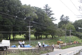 2016年8月28日、武蔵大和〜西武遊園地駅間、線路東側の道路から。