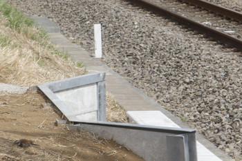 2017年3月18日、南大塚駅下りホームの本川越方、ツグミ?