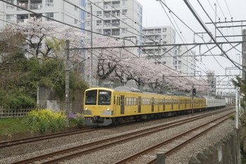 2017年4月8日、所沢~新秋津、JR新秋津駅へ向かう263F+1241F。