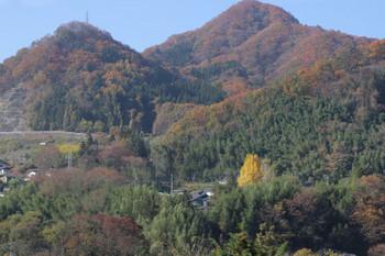 2018年11月12日、後閑〜上牧、紅葉がきれいという感じはなかったですがたまに見えるイチョウの黄色が映えていました。