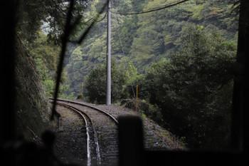 2018年9月9日9時25分ころ、沢間~土本、車両は小さいですが軌間は日本標準軌。森の中を進みます。