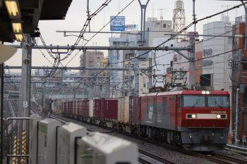 2019年1月12日 12時7分ころ、駒込、EH500-55牽引の南行コンテナ列車。