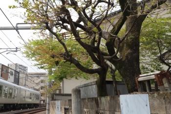 2019年3月31日。池袋〜椎名町。001-B編成の13レ。
