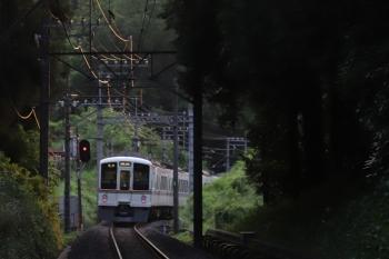 2019年6月18日。高麗〜武蔵横手。4003F+4015Fの6001レ。