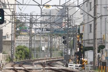 2019年9月11日 12時31分ころ。奥に、目白〜高田馬場間を南へ向かう、いつもはないJRの列車が写ってます。伊豆特急へ転用されるE257系の回送と思われます。