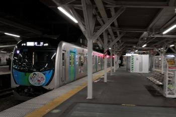 2019年11月5日。所沢。4番ホームへ到着する40102Fの505レ。