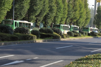 2019年11月9日 14時52分ころ。日比谷通りに止まるたくさんの都バス。