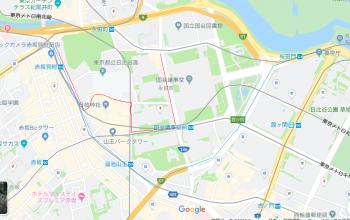 グーグルマップ。