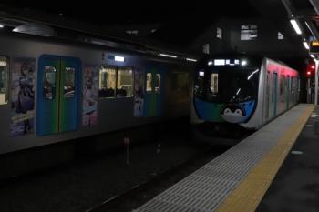 2019年11月24日。所沢。S-Trainのすれ違い。左は40102F(白猫)の404レ、右は40103F(コウペン)の403レ。