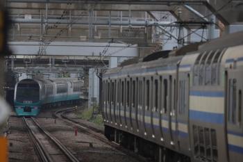 2019年12月26日 9時40分ころ。西大井。新幹線の高架橋の下を走るE251系の下り列車とE217系の横須賀線・上り列車。