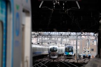 2020年2月22日。池袋。右から、電留線では40151F(ドラえもん)が帯泊、001-E編成の20レが到着し、5・6番ホームでは40152Fの2117レが発車待ち、そして20000系の下り列車が発車。