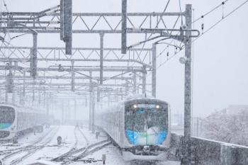 2020年3月29日。石神井公園。40104Fの元町・中華街ゆきS-Train 402レ。