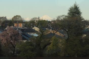 2020年4月14日 5時50分ころ。大泉学園〜石神井公園。5204レの車内から見えた富士山。
