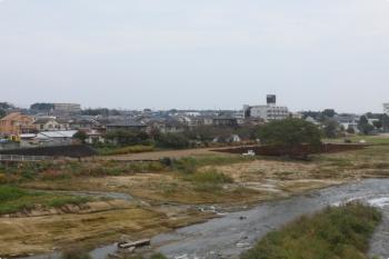 2020年10月3日。仏子〜元加治。河原の大木の周りに土が補充されてます。