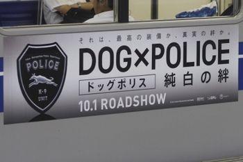 2011年9月23日、石神井公園、クハ6156側面帯内の広告。