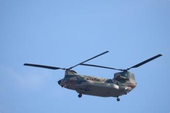2020年11月16日 10時半ころ。小手指車両基地横の公道から。自衛隊のヘリコプター。