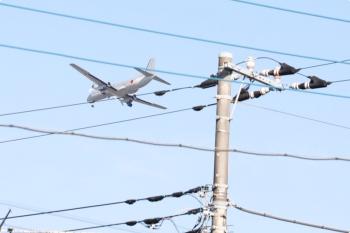 2020年11月16日 10時半ころ。小手指車両基地横の公道から。上の写真で左上に写っていた自衛隊の飛行機のアップです。
