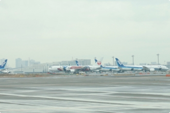 2020年12月10日 9時25分ころ。羽田空港。空港ビルからバスに乗り、地面から飛行機へ搭乗でした。バスの車内からディズニーのキャラクターが描かれた日航機が見られました。