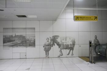2013年6月22日、元町・中華街駅、地下のホームと地上の改札口との間のエレベーター通路の壁。