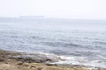 """2015年7月12日、観音崎から見た東京湾を行く大型船。"""""""