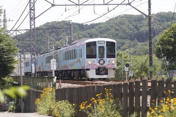 2016年6月18日 12時9分頃、仏子~元加治、4009Fの下り列車。13レの次。