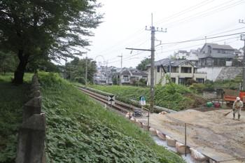 2016年8月28日、武蔵大和〜西武遊園地駅間、都立公園内から。