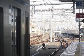 2017年7月19日 5時56分ころ、石神井公園、3番ホームに停車中の20151F。入換信号機は6番線への入線許可を表示。