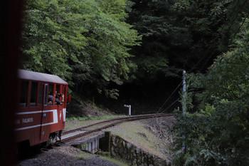2018年9月9日 10時34分ころ、尾盛~閑蔵、森の中を進む列車の先頭が車内から見えました。アプト式電気機関車ではなくディーゼル機関車に押されて進んでいます。