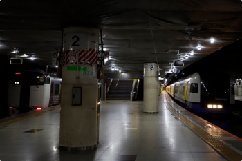 2021年2月19日 9時46分頃。東京。右が、1番ホームから南へ発車する215系の回送列車。