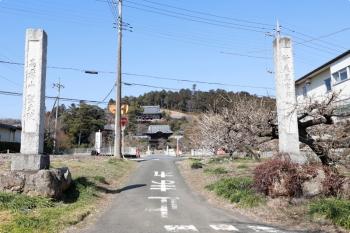 2021年2月21日。高麗神社の参道?。