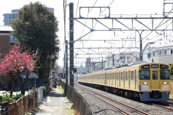 2021年2月28日。東村山〜所沢駅間。2455F+2055Fの1603レ。