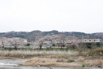 2021年3月25日。仏子〜元加治駅間。メトロ10000系の1703レ。
