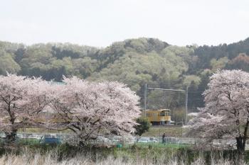 2021年4月1日。仏子〜元加治駅間。N2000系2+8連の4129レ。
