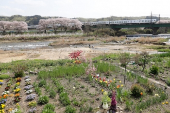 2021年4月1日。仏子〜元加治駅間。ラビュー 001系の15レ。