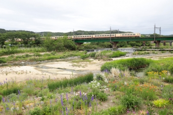 2021年5月16日 15時55分頃。仏子〜元加治駅間。10105Fの上り臨時列車。