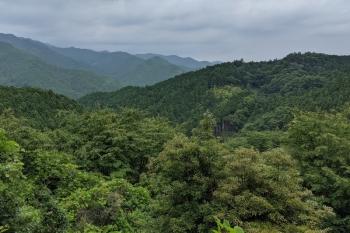 2021年6月13日。上記の分岐点から黒山へ少し下ったところの眺望。