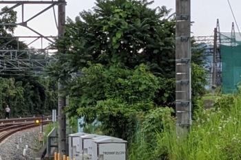 2021年6月27日 16時36分頃。入間市。右の茂みとネットの間の奥の方に、問題の発煙が見えます。左手は現場へ向かう駅員さん。
