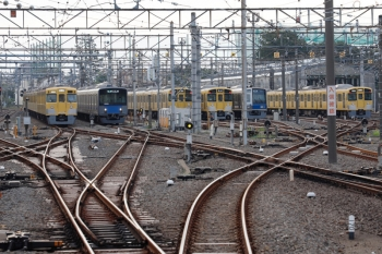 2021年9月13日。上石神井。中線へ入った2411F+2061Fの回送列車(左端)の横を20103Fの4603レが通過。