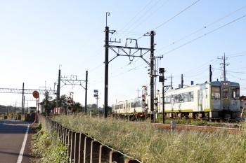 2021年9月20日 6時44分頃。越生〜毛呂。キハ110形3連の225D。左奥に、武州唐沢駅に停車中の東武8000系のヘッドライトが見えてます。