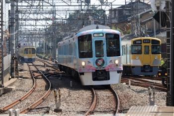 2021年9月23日 11時42分頃。西所沢。右から、6140レで1番ホーム到着後に引き上げ線へ入る2463F+2077F、4009Fの下り列車、2069Fの5220レ。